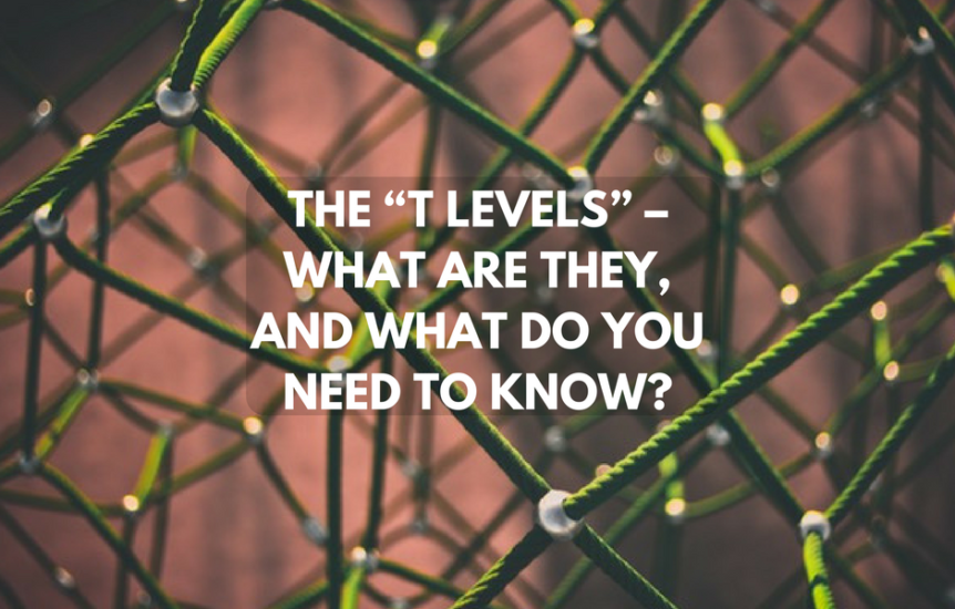 what are T Levels further education technical courses